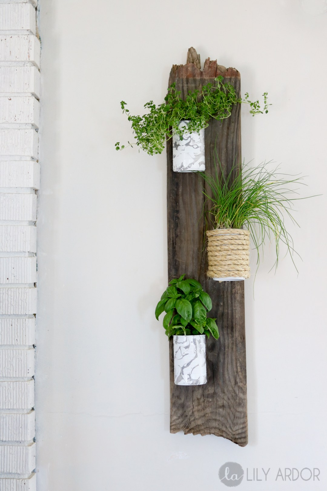 DIY Herb Wall Planter - Compact and RECYCLED!! Lilyardor
