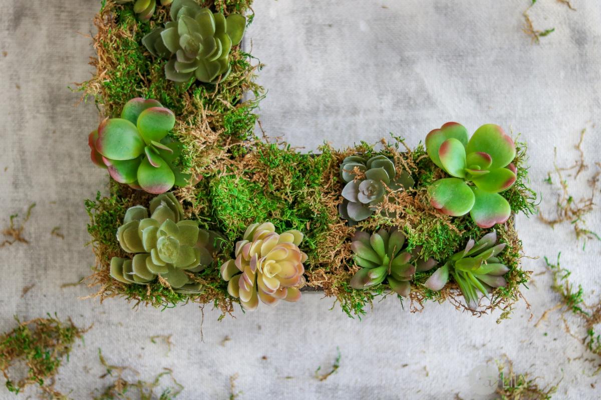 Rustic Home Decor – DIY Succulent Letter