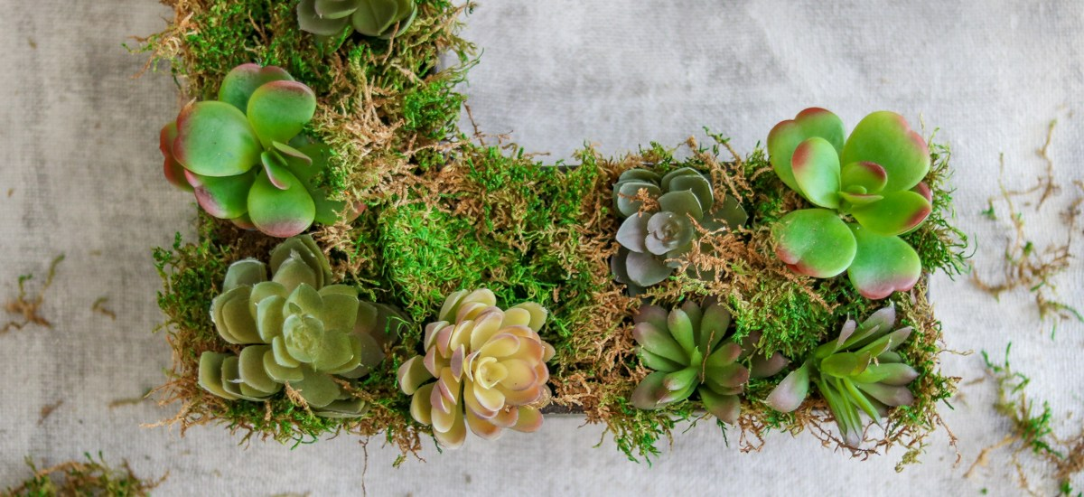 Rustic Home Decor – DIY Succulent Letter