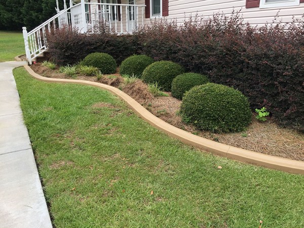 concrete edging lily landscaping