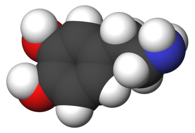 800px-dopamine-3d-cpk.jpg
