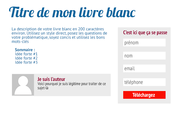 livre-blanc-marketing-landing-page