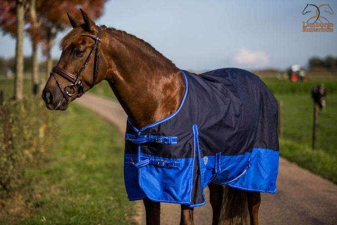Profi-Rider Regendeken Fleece Blue / Royal Blue