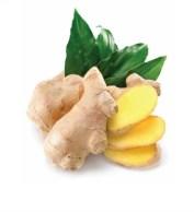 Bilderesultat for ginger doterra