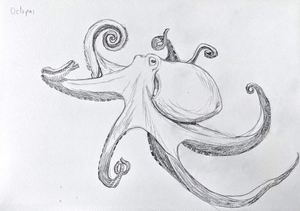 Octopus Pencil