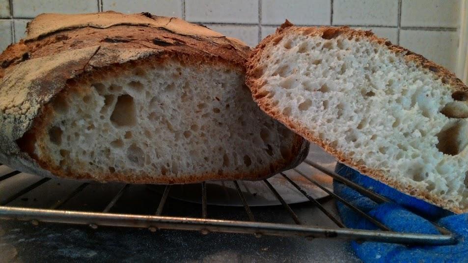 Pane con autolisi lunga.