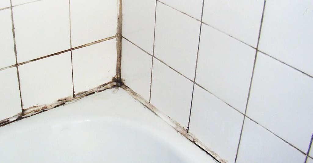 ¿Tienes moho en el baño? Te enseñamos cómo quitarlo
