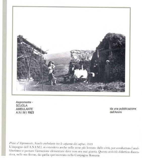 1923-animi