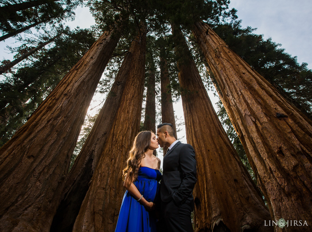 Sequoia National Park Maternity Photography  Yvette  Justin