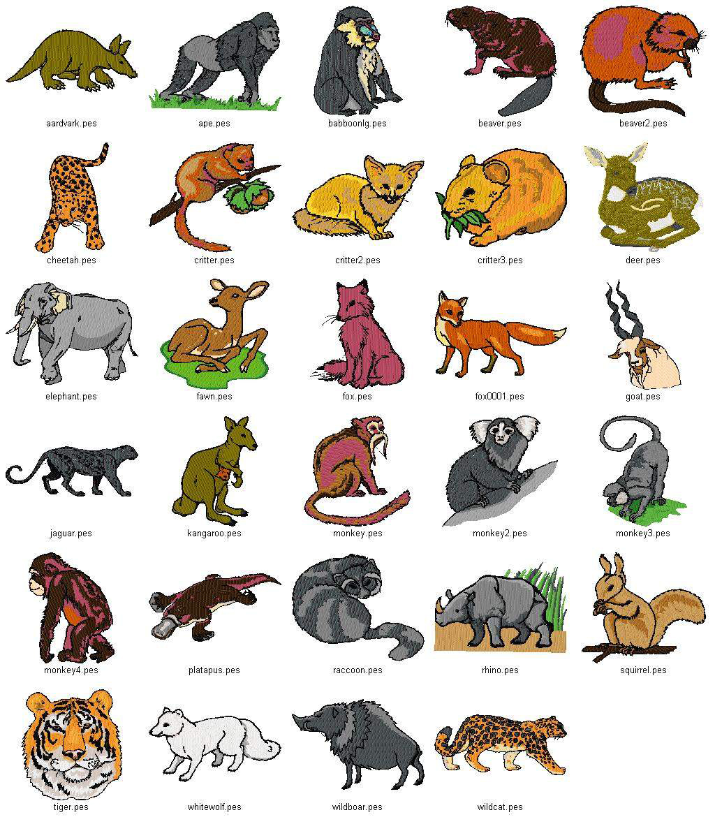 Pet Animals Pictures With Names Chart