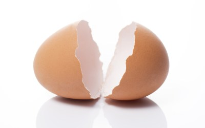 Facing Your Fears, One Eggshell at a Time
