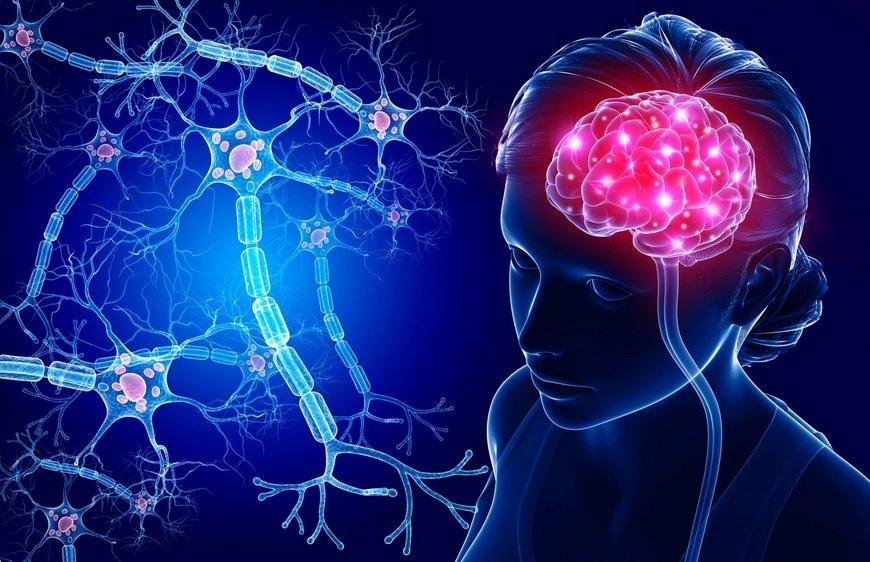 Onbewust handelen patronen in hersenenOnbewust handelen patronen in hersenen