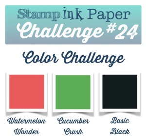 SIP-Color-Challenge-24-800