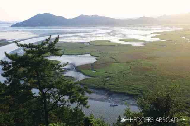 Suncheon Bay Korea