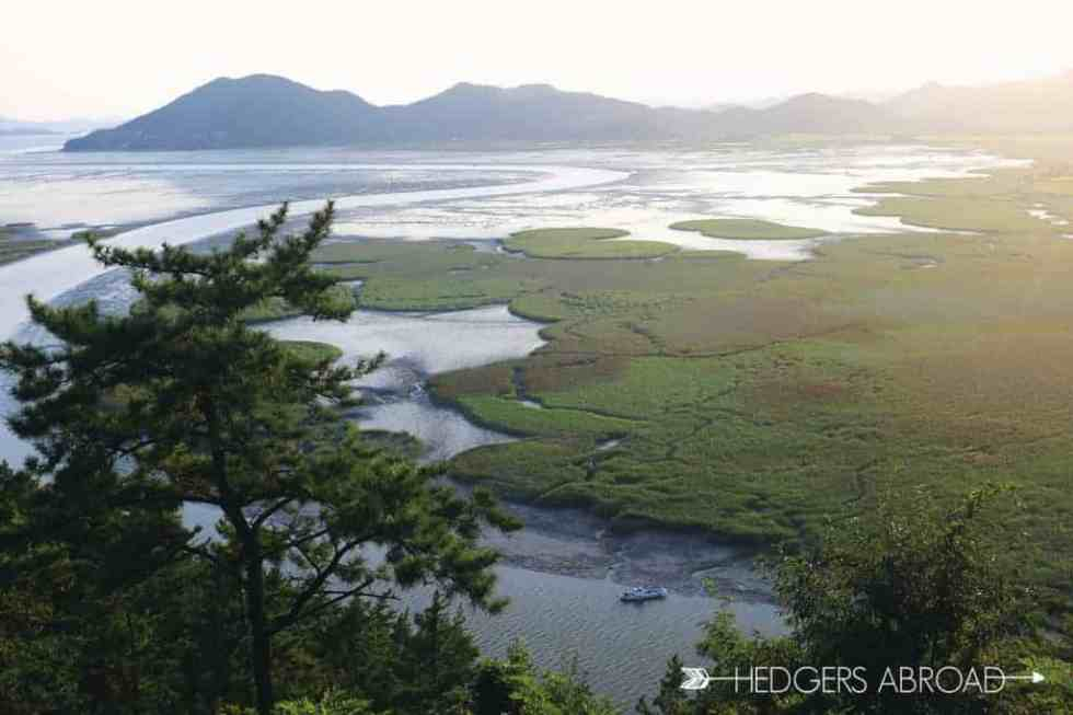 Suncheon Bay Korea