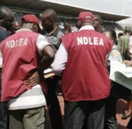 Hit-and-run driver kills NDLEA officer,Ogbennewo Oluwanifemi in Jigawa State