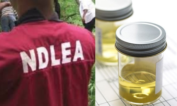 , Nigerian youths now take processed urine to feel high – NDLEA, All 9ja