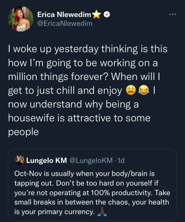 Now I understand why being a housewife is attractive to some people - BBNaija's Erica Nlewedim