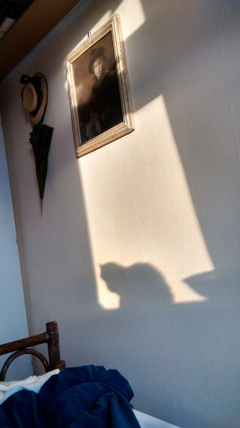 It's true that shadows tell the time...06:24:59(15-07-2014)