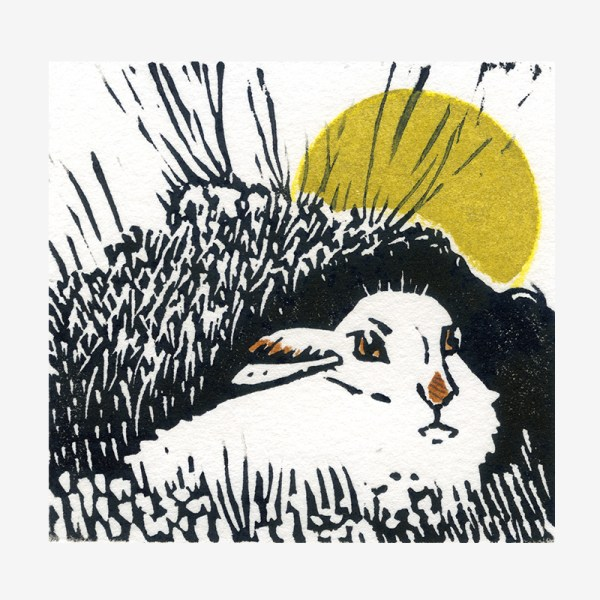 Mountain Hare - linocut