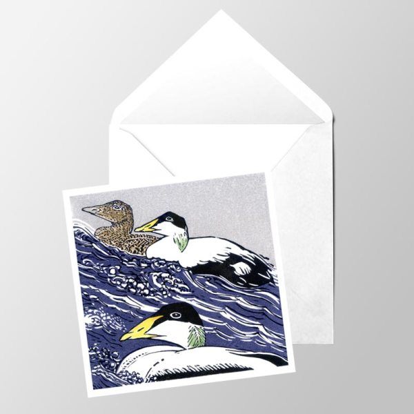 Eider at Sea- Card