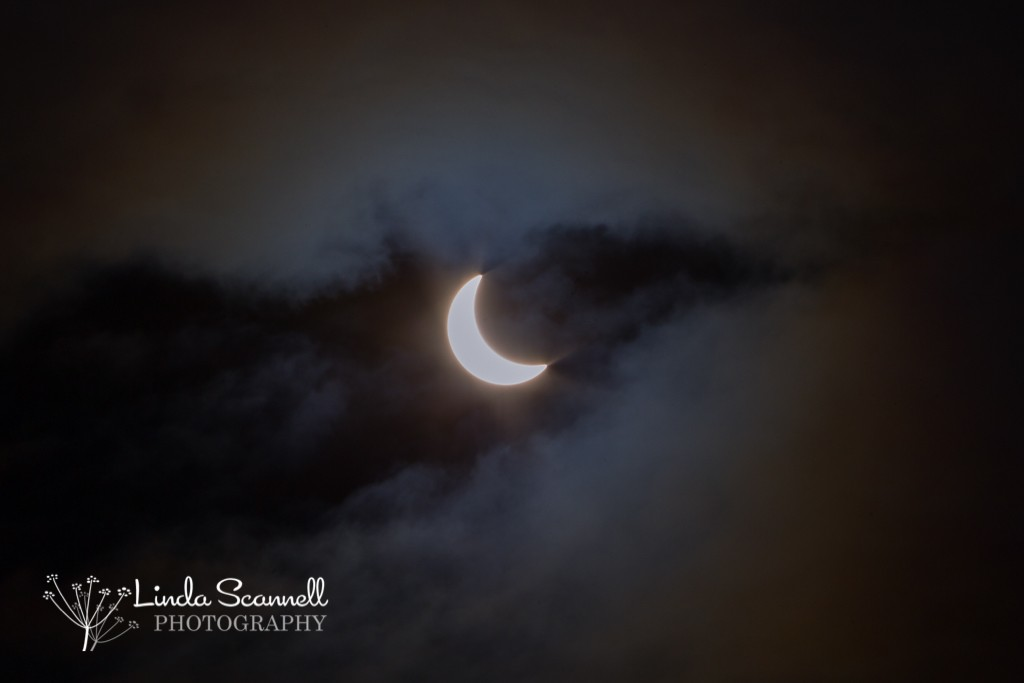 Solar eclipse viewed from Warwick UK | 2015 | Linda Scannell Photography