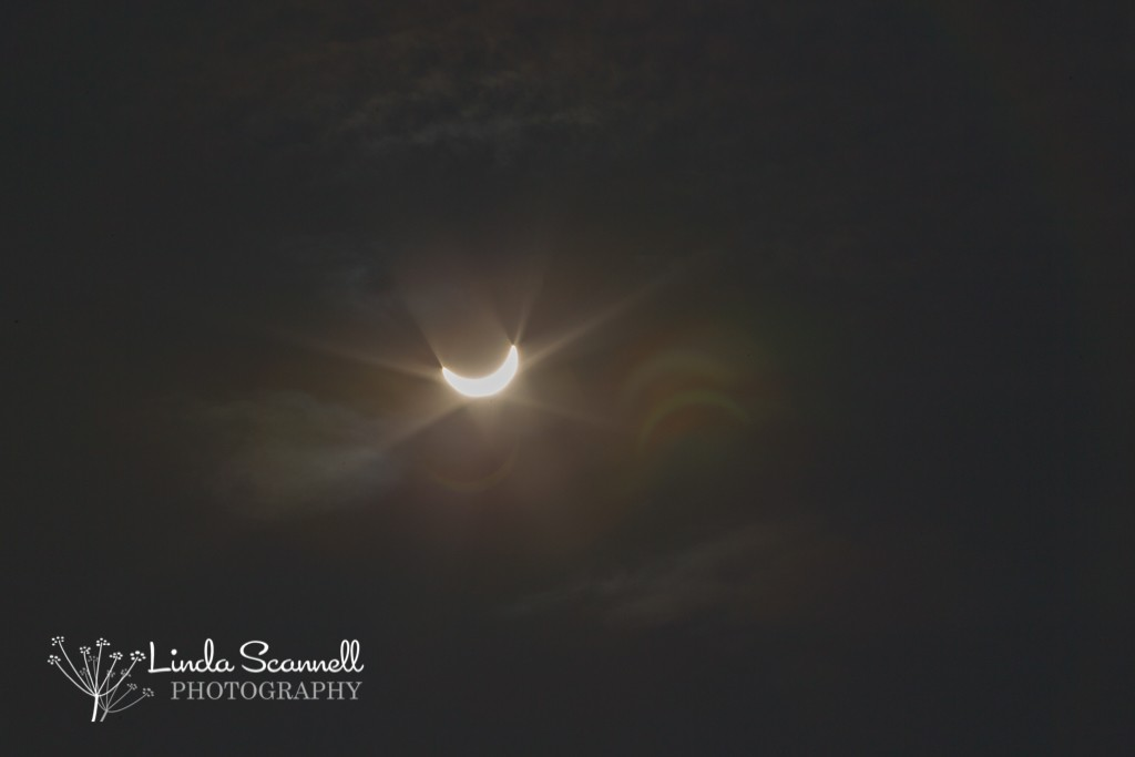 Solar eclipse 2015 in UK | Linda Scannell Photography