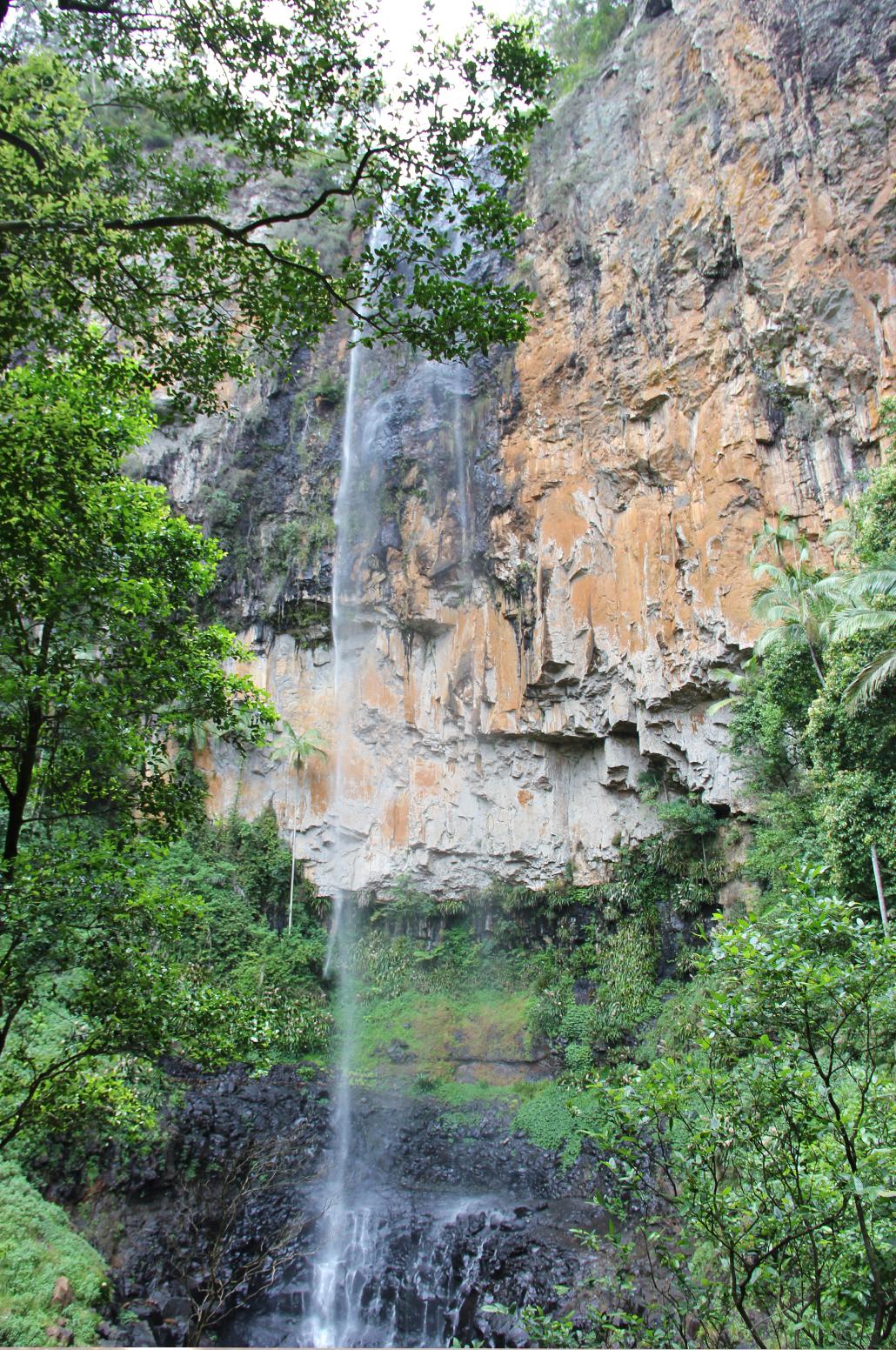 springbrook national park Little Nerang Creek gorge
