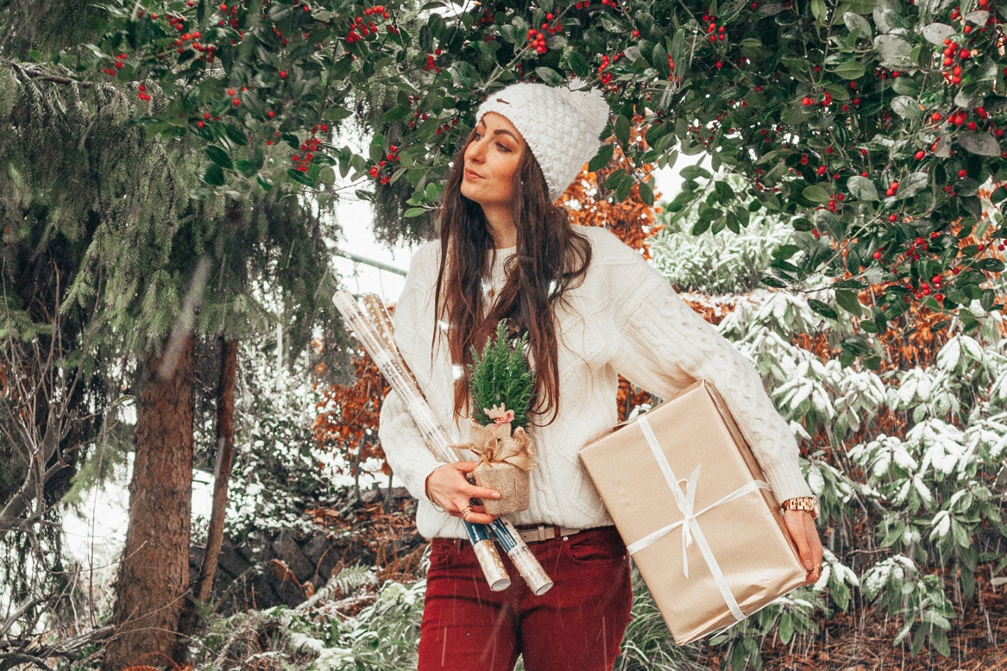 Merry Christmas Lifestyle by Linda