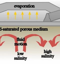 the convective dynamics below the salt ridge patterns illustration credit jana lasser [ 2362 x 1097 Pixel ]