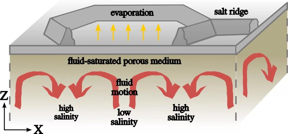 medium resolution of the convective dynamics below the salt ridge patterns illustration credit jana lasser