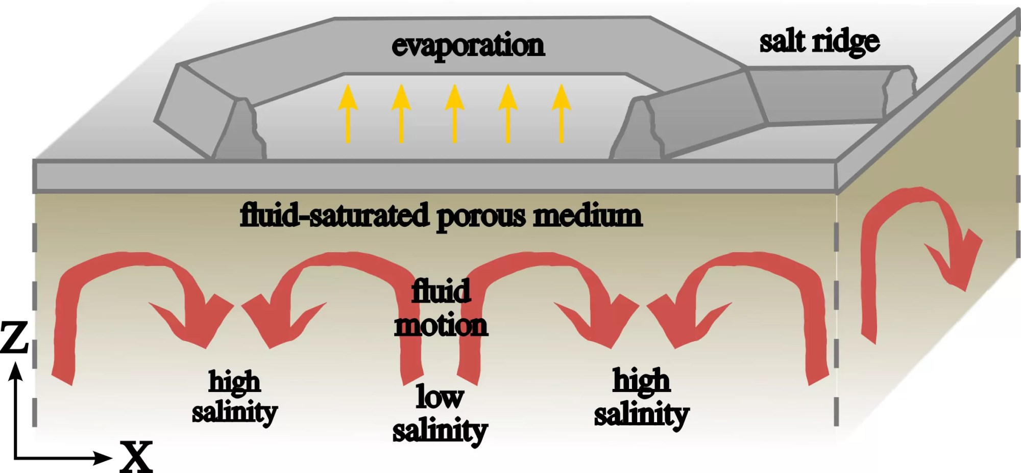 hight resolution of the convective dynamics below the salt ridge patterns illustration credit jana lasser