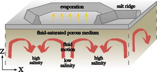 small resolution of the convective dynamics below the salt ridge patterns illustration credit jana lasser