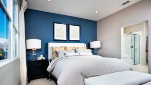 White and gray master bedroom with blue accent wall.
