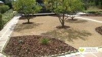 Before/After Renovated California Backyard Orchard ...