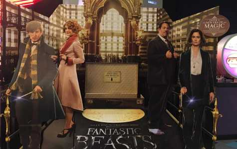 I'm More of a Chaser, Really: Fantastic Beasts and Where to Find Them (Movie Review)