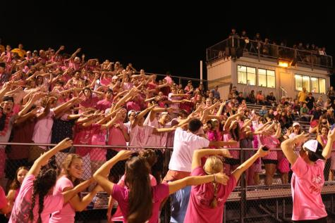 Student Section – Rollar Coaster 2