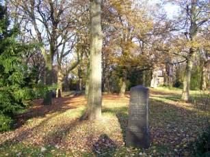Lindener Bergfriedhof im Herbst