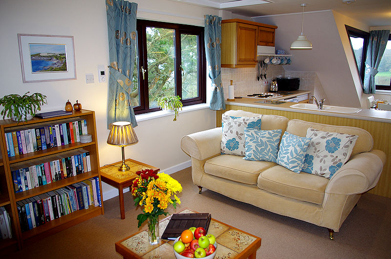 Ocean View - Kitchen - Lounge - Cornwall Cottages