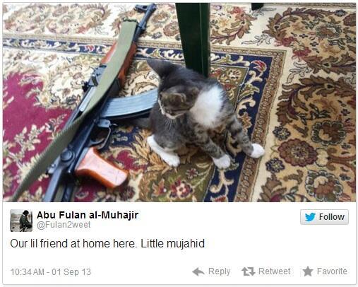 Cats-For-Jihad-02