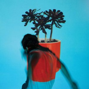 local-natives-sunlit-youth-album-new