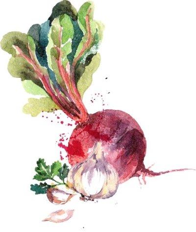 Beetroot Hummus-illustration