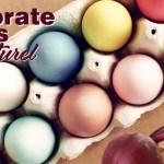 Natural Easter Egg Dyes-slider