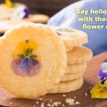 Pansy Shortbread Cookies for Spring-slider