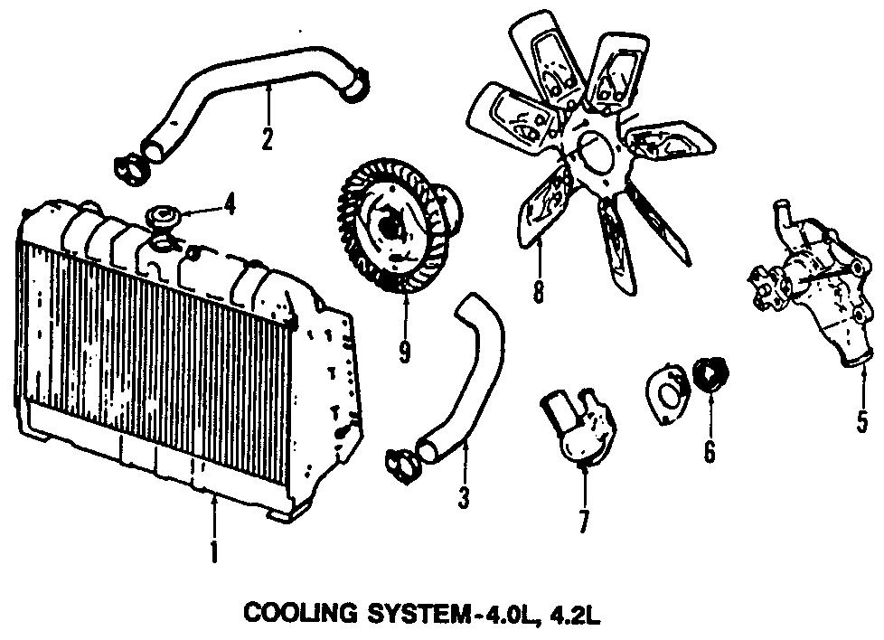 Jeep Wrangler Upper hose. 6 CYLINDER. CJ, YJ Series; 4.2L