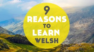 9 Reasons to Learn Welsh
