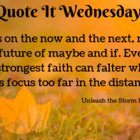 Unleash the Storm by Annette Marie {Quote It Wednesday}