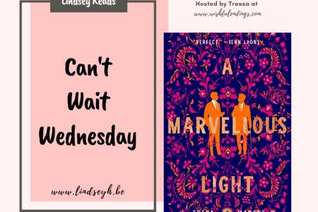 Can't Wait Wednesday - A Marvellous Light