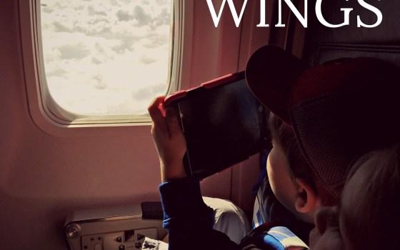 Pilot Wings