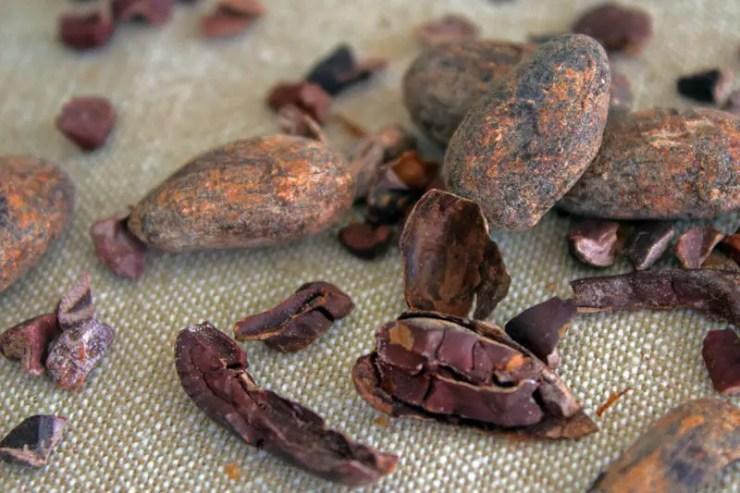 Fèves de cacao torrefiées